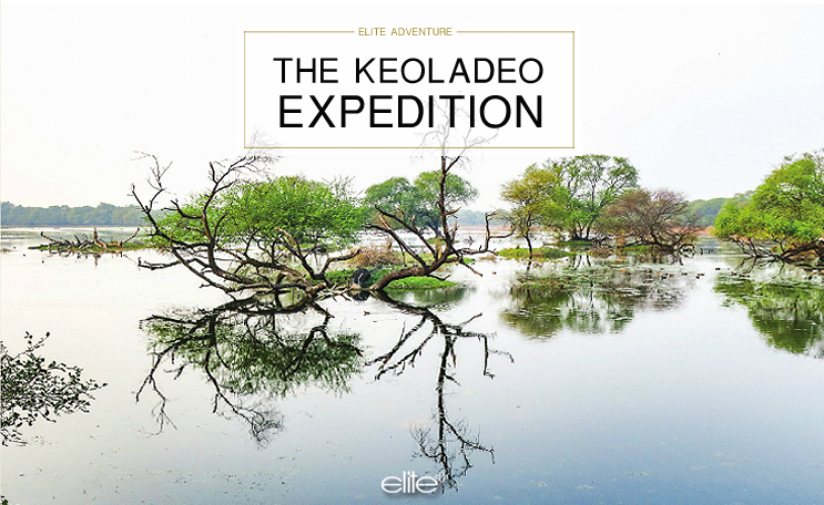 THE KEOLADEO EXPEDITION