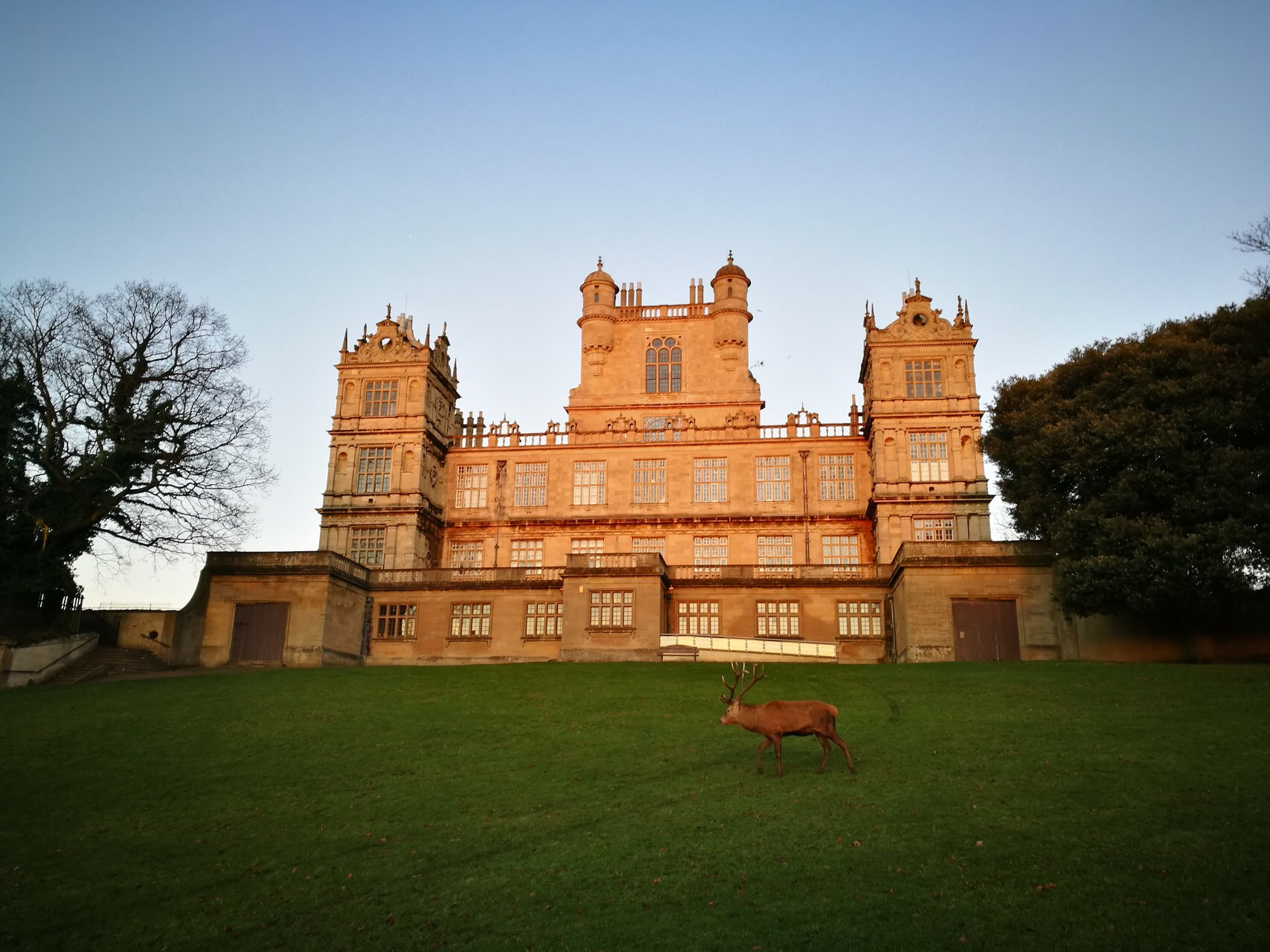 Wollaton Hall and Deer Park: As Colourful in Winter as in Spring and Summer