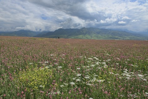 Kyrgyzstan: Swiss Mountain Paradise in Central Asia