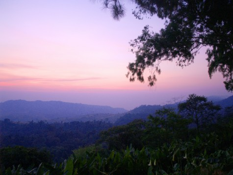 5 accommodations in Khao Kho Na to go Don't let the mist fade away.