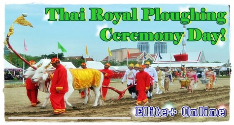 Thai Royal Ploughing Ceremony Day!
